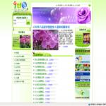 台北花卉產銷股份有限公司(台北花市)
